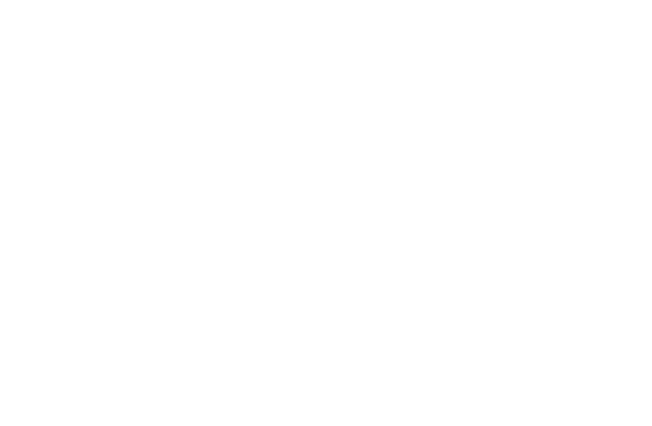 LVJ Motorsports